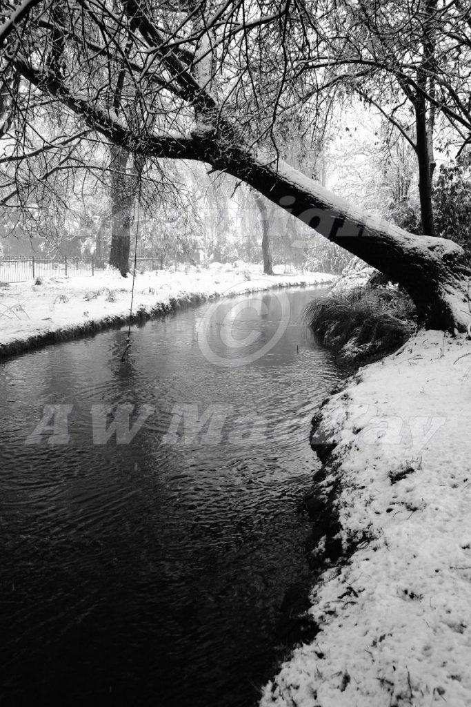 Heathcote River II