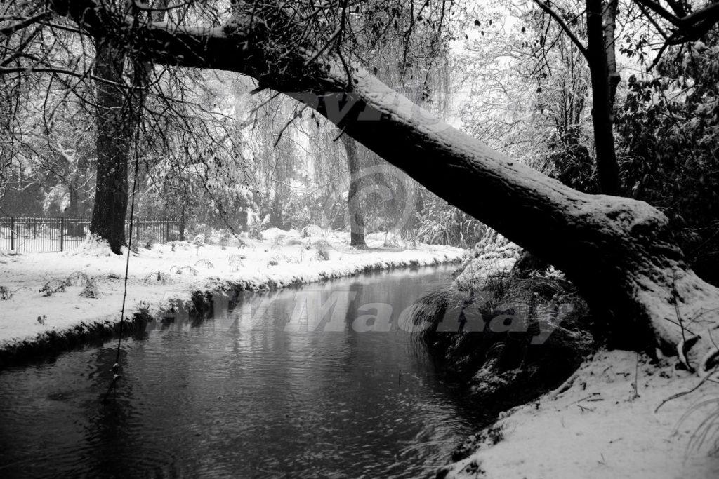 Heathcote River I