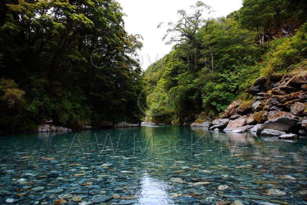 Haast River Pool I - SH 6 - South-Westland South Island